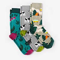 Носки Dodo Socks набор Selo 42-43, 3 шт