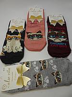 Носки женские короткие (36-40 р) Турция оптом купить от склада 7 км