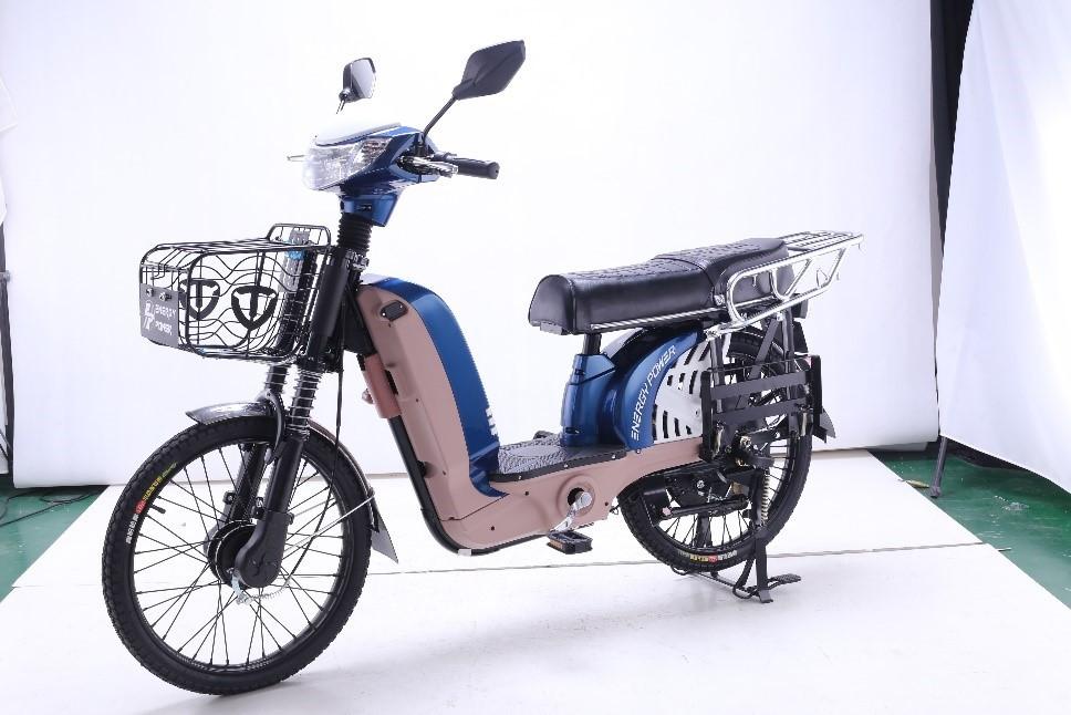 Электровелосипед Energy Power (TAILG) TDL232Z