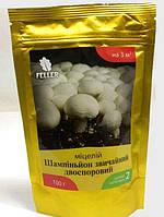 Мицелий грибов Шампиньон обыкновенный.