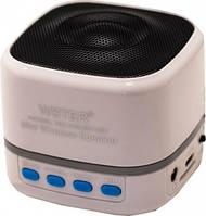 Портативная колонка WSTER WS-201BT с bluetooth, White