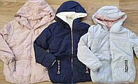 Куртка двухсторонняя  на меху для девочек оптом, Taurus, 8-16 лет, арт. X-53, фото 1