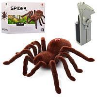 """Радиоуправляемый паук «Spider 787"""""""