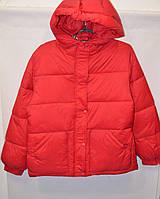 Женская куртка /осень