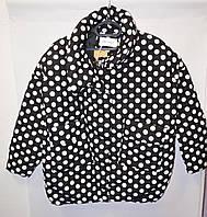 Куртка осенняя женская в горошек