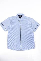 Рубашка 120P293 junior (Бело-синий) 35