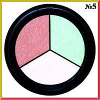 Тени для Век Qianyu MS 1203 Трехцветные Матовые Белые Розовые Салатовые светлые Тон 05