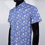 Сорочка чоловіча (приталена) з коротким рукавом Bagarda BG 6535 BLUE 93% бавовна 7% еластан M(Р), фото 2