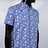 Сорочка чоловіча (приталена) з коротким рукавом Bagarda BG 6535 BLUE 93% бавовна 7% еластан M(Р), фото 3