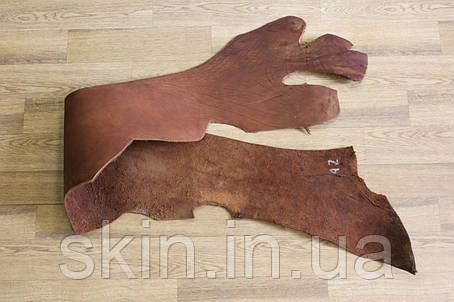 Кожа натуральная ременная в полах, толщина 3.2 мм, коньячного цвета, арт. СК 1680-6, фото 2