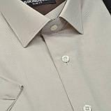 Сорочка чоловіча, приталена (Slim Fit), з коротким рукавом Birindelli в смужку 014000156 80% бавовна 20% поліестер L(Р), фото 2