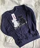 Синий свитшот с милыми котами, фото 4