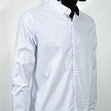 Сорочка чоловіча, приталена (Slim Fit), з довгим рукавом Bagarda BG6703 WHITE 93% бавовна 7% еластан M(Р), фото 3