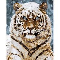 Картина для росписи по номерам в коробке. Тигр в снегу, 40*50 см