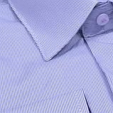 Сорочка чоловіча, прямого крою з довгим рукавом Birindelli 03-267 80% бавовна 20% поліестер XXL(Р), фото 2