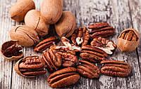 Пекан – дерево похожее на грецкий орех