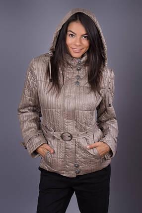 Куртка женская в упаковке 5 шт весна-осень, фото 2