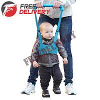 Детские ходунки Walking assistant, вожжи, поводок