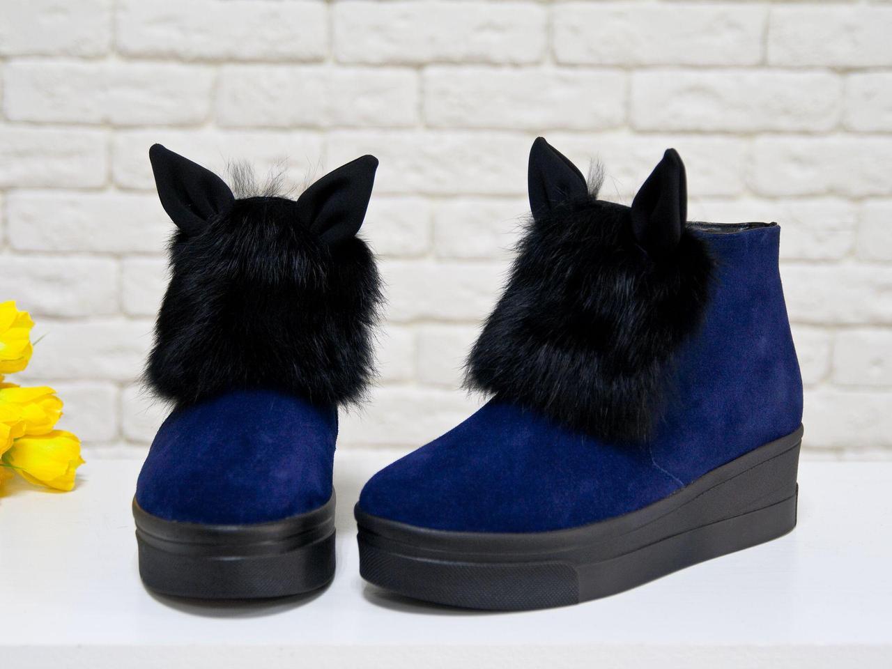 Яркие и игривые женские ботинки из натуральной замши синего цвета с ушками и меховой вставкой из натурального кролика, на удобной не высокой танкетке,
