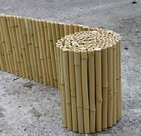 Бамбуковый забор d 12-14 мм (3000х300)