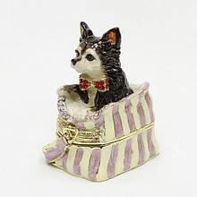 Шкатулка стильная для бижутерии Собачка в сумке