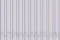 Обои виниловые на флизелиновой основе ArtGrand Bravo 86024BR84, фото 2