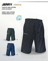 Спортивные шорты Royal  (Jerry pants)