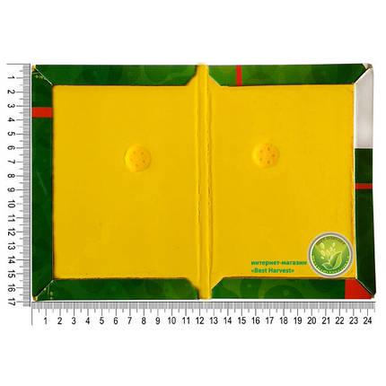 Клеевая ловушка «КрысоНет» 17х24,5 см (книжка маленькая), оригинал, фото 2