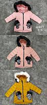Детские зимние куртки для девочек Рукавичка. Венгрия. 1-4 лет.