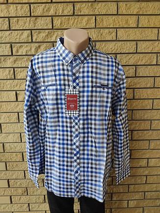 Рубашка мужская больших размеров  коттоновая брендовая высокого качества BAGARDA, Турция, фото 2