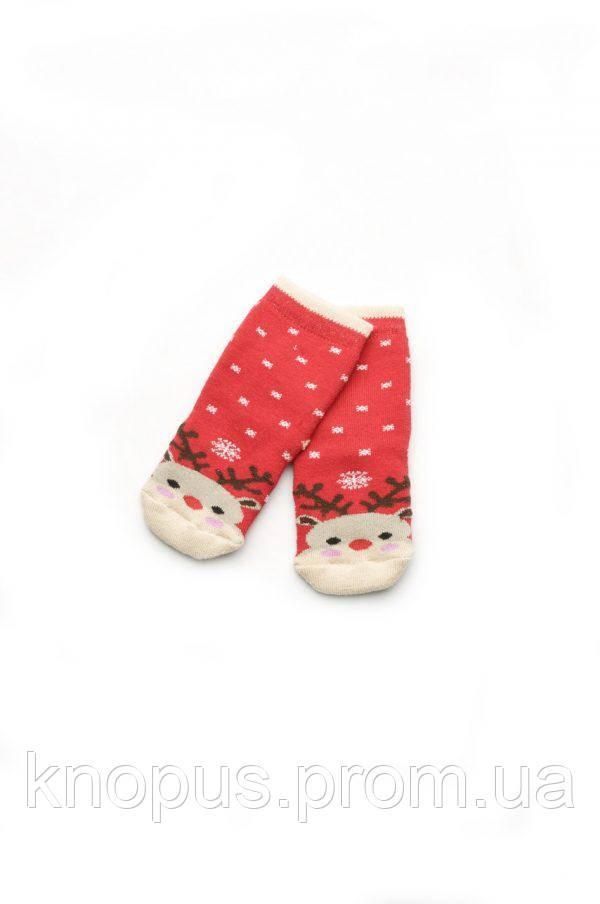 Носочки махровые для новорожденных, Модный карапуз. Размеры 68-98