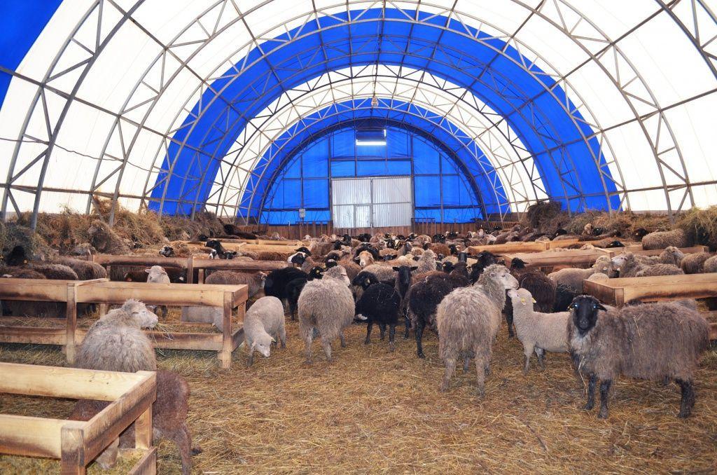 Будівництво тентових ангарів в Україні, тентові склади, тентові корівники, тентові зерносховища.