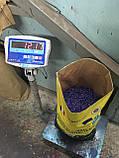 Высокоурожайный подсолнечник Жалон Гранд под Гранстар 50 грамм. Гибрид держит семь рас заразихи A-G. Стандарт, фото 2