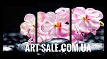 Модульная картина Орхидеи розовые