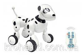 Интерактивная игрушка собака робот на радиоуправлении со светом, звуком (619 )