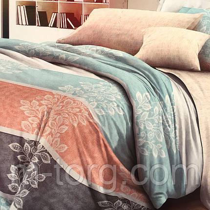 Комплект постельного белья евро размер 200/220,простынь 220/240,нав-ки 70/70,ткань поплин 100% хлопок, фото 2