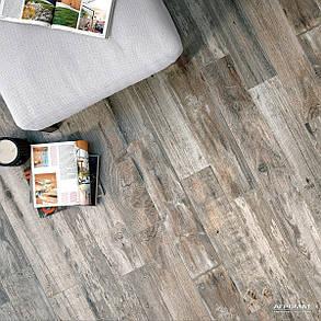 Керамогранит OSET Lumber PT13232 GREYED, фото 2