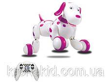 Интерактивная игрушка собака робот на радиоуправлении HappyCow Smart Dog 30 см. со светом, звуком (777-338), фото 3