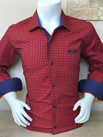 Детская рубашка Senior Besni  флок, фото 2