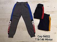 Утепленные спортивные штаны на мальчика оптом, Mr.David , 116-146 рр., фото 1