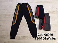 Утепленные спортивные штаны на мальчика оптом, Mr.David , 134-164 рр., фото 1