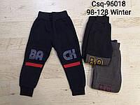Утепленные спортивные штаны на мальчика оптом, Mr.David , 98-128 рр., фото 1