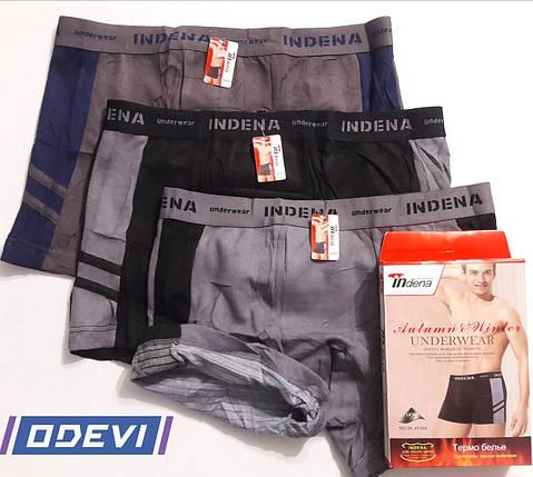 Термо трусы  Indena для мужчин на спортивной резинке, фото 2