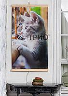 Інфрачервоний настінний обігрівач Кошенята ТРІО