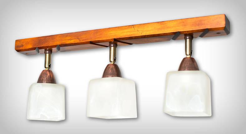 Люстра Планка направленного света, фото 2