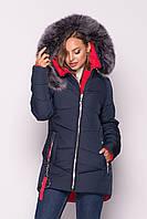 Зимняя женская удлинённая куртка с натуральной опушкой , цвет тёмно-синий .
