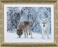Набор для вышивки крестиком Сквозь чащу волков  39x28.5 см Чарівна Мить