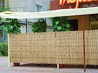 Бамбуковый забор без окантовки, 2000х1200,