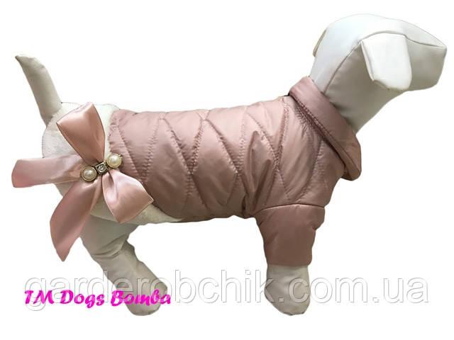 Куртка, пальто  для собаки с закрытым животом К-47. Одежда для собак