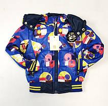 Детский демисезонный комбинезон куртка и штаны для мальчика синий 2-3 года, фото 3